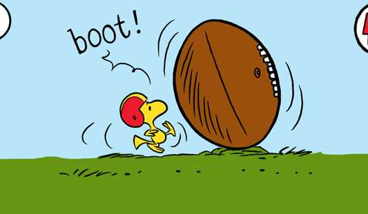 1000  images about Football on Pinterest | Football season, Bully ...